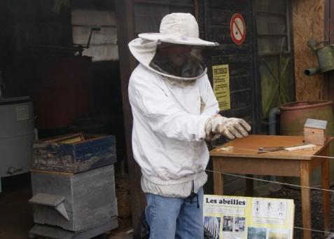 C2 abeille vareuse